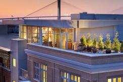 Bluegreen Studio Homes at Ellis Square