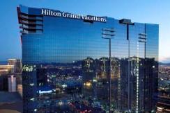 Hilton Elara